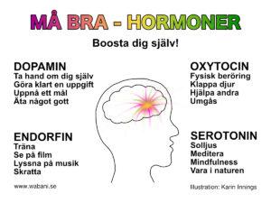 Wabani-må bra hormoner